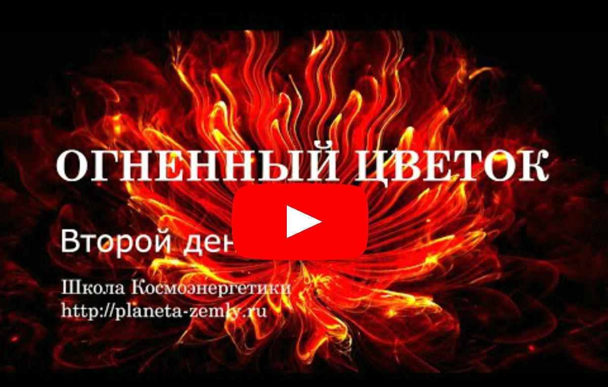 Огненный цветок Сабанцев Сергей